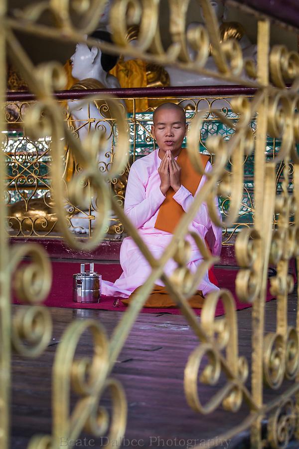 Nun worshiping at the Shwedagon pagoda, Yangon, Myanmar