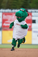 Kannapolis Intimidators mascot Tim E. Gator runs the bases between innings of the South Atlantic League game against the West Virginia Power at Intimidators Stadium on July 3, 2015 in Kannapolis, North Carolina.  The Intimidators defeated the Power 3-0 in a game called in the bottom of the 7th inning due to rain.  (Brian Westerholt/Four Seam Images)