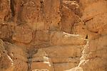Israel, Nahal Tamar in the Negev