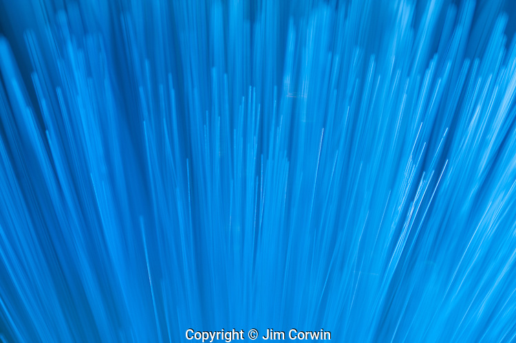 Fiber Optics close-up abstract