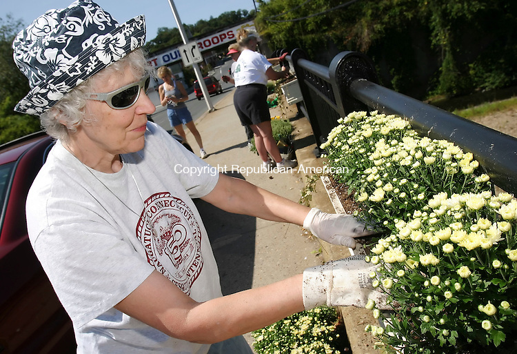NAUGATUCK,  CT 11 September 2005 -091105BZ04-   Mary Lou Sharon, of Naugatuck, a member of the Naugatuck Garden Club, plants mums in a box on the Howard Whittemore Bridge Sunday afternoon.  <br />  Jamison C. Bazinet / Republican-American