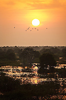 Prek Toal Bird Sanctuary in Tonle Sap lake is considered one of the most important protected wildlife areas in all of Southeast Asia