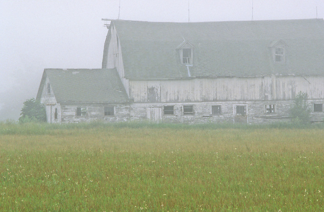 A misty fog surrounds a old weathered barn, Door County, Wisconsin