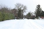 Snow 2/12/10