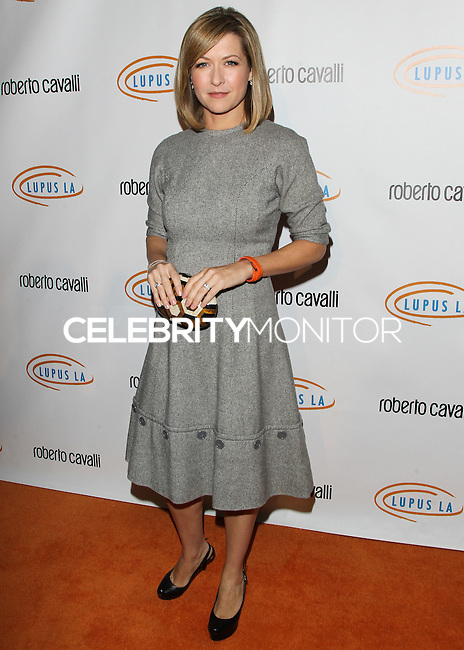 BEVERLY HILLS, CA, USA - NOVEMBER 21: Ali Hillis arrives at the 12th Annual Lupus LA Hollywood Bag Ladies Luncheon held at The Beverly Hilton Hotel on November 21, 2014 in Beverly Hills, California, United States. (Photo by Celebrity Monitor)