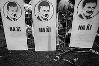 Wodden panels portraying Yanukovich as a shooting target that  read: Try!