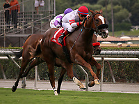 ARCADIA, CA: October 06: #1 Its Gonna Hurt ridden to victory by Tiago Pereira in the Breeders Cup win and you're in Speakeasy Stakes at Santa Anita Park on October 06, 2018 in Arcadia, California (Photo by Chris Crestik/Eclipse Sportswire)