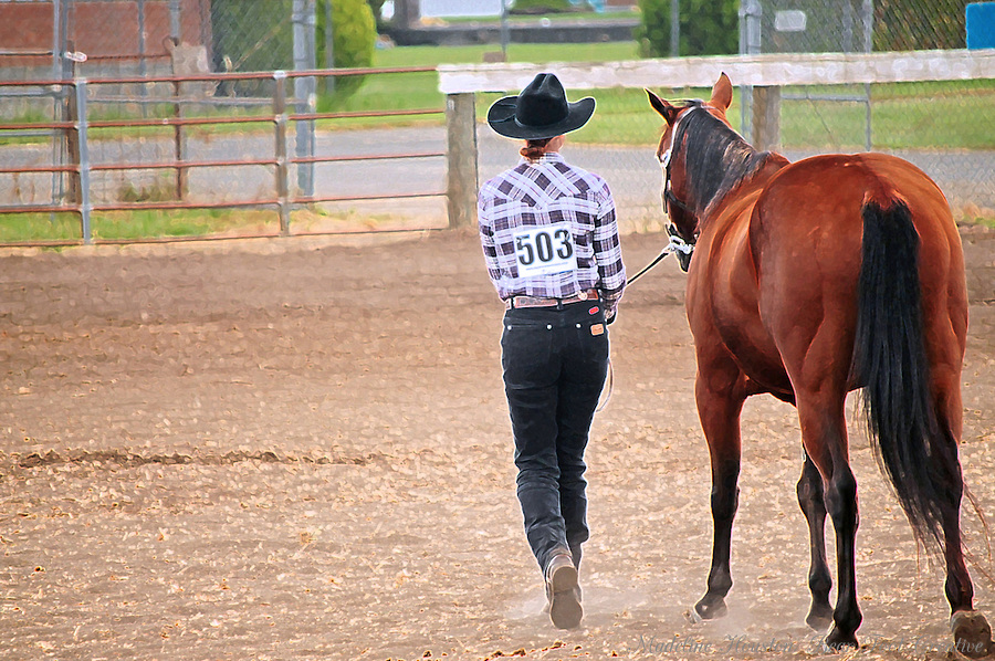 A young woman in a plaid shirt and cowboy walks away with her horse after her turn in front of the judges. Photo illustration.
