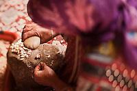 Afrique/Afrique du Nord/Maroc/Env d' Immouzer-Ida-Outanane: dans une ferme préparation artisanale de l'Huile d'argan -  Cassage des noix d'argan pour en extraire les amandons