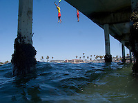 San Diego Junior Lifeguards Jump form OB Pier - seconds