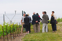 A group of visitors in the vineyard at the experimental vineyard of the CIVC at Plumecoq near Chouilly in the Cote des Blancs It is used for testing clones soil treatment vine treatments spraying, Champagne, Marne, Ardennes, France