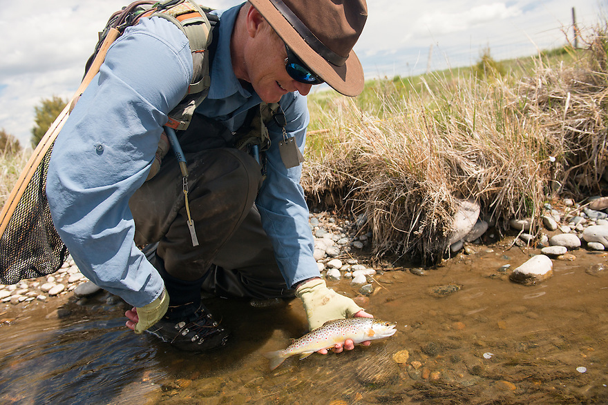 Ed Tompkins of Bozeman, Montana, admires a brown trout on Darlington Spring Creek.