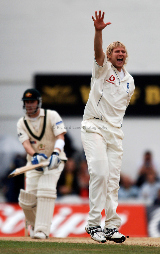 Photo: Glyn Thomas..England v Australia. nPower Test Series. The Ashes 2005..11/09/2005..England's Matthew Hoggard (R) appeals successfully for the wicket of Michael Clarke.