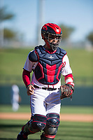 Salt River Rafters catcher Tres Barrera (12), of the Washington Nationals organization, during an Arizona Fall League game against the Surprise Saguaros at Salt River Fields at Talking Stick on November 5, 2018 in Scottsdale, Arizona. Salt River defeated Surprise 4-3 . (Zachary Lucy/Four Seam Images)