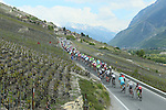 The peloton roll through some stunning scenery during Stage 4 of the 2016 Tour de Romandie, running 173.2km from Conthey to Villars, Switzerland. 30th April 2016.<br /> Picture: Heinz Zwicky | Newsfile<br /> <br /> <br /> All photos usage must carry mandatory copyright credit (© Newsfile | Heinz Zwicky)