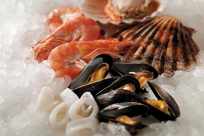 Fresh Shellfish - Sscallops  mussels, prawns - stock photos