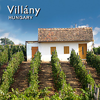 Villany Wine Region | Hungary Pictures Photos Images & Fotos