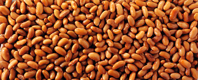 Barlotti beans