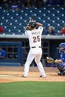 ***Temporary Unedited Reference File***Nashville Sounds designated hitter Rangel Ravelo (25) during a game against the Iowa Cubs on May 3, 2016 at First Tennessee Park in Nashville, Tennessee.  Iowa defeated Nashville 2-1.  (Mike Janes/Four Seam Images)