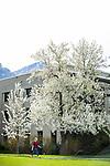 1704-10 GCS Spring 0042<br /> <br /> 1704-10 GCS Spring<br /> <br /> April 6, 2017<br /> <br /> Photography by Nate Edwards/BYU<br /> <br /> &copy; BYU PHOTO 2016<br /> All Rights Reserved<br /> photo@byu.edu  (801)422-7322
