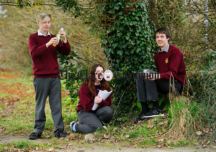 "Michael Fitzgerald, Grainne Brady and  Mark Leyden of St Joseph's Secondary School, Tulla, whose project is entitled ""Investigation into the environmental impact of forestry plantation in Ireland""  Photograph by John Kelly."