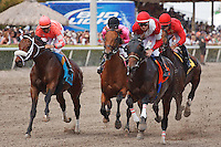Fort Larned (right) with jockey Julien Leparoux settling into position the first time past wire in the 1 3/16 Skip Away Stakes (G3). Gulfstream Park Hallandale Beach Florida. 03-31-2012. Arron Haggart / Eclipse Sportswire