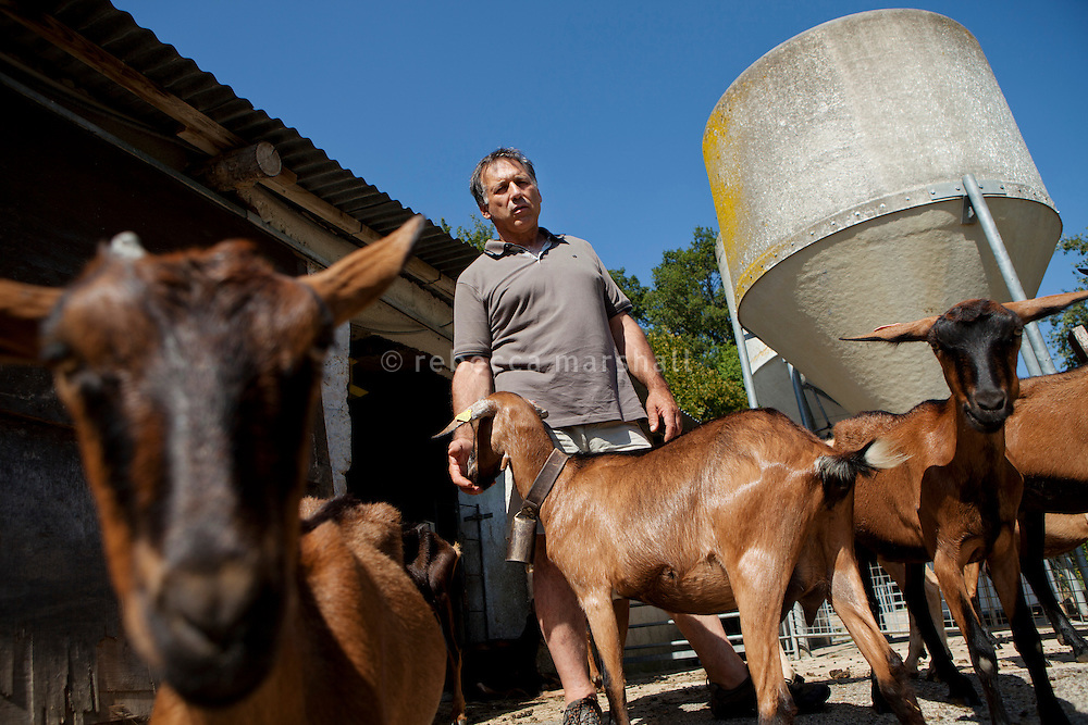 Bruno Gabelier with his goats outside the milking parlour of La Domaine des Courmettes, above the village of Tourrettes-Sur-Loup in the Alpes Maritimes, France, 02 August 2013. Bruno is head of the F.D.S.E.A., a regional federation of sheep and goat-raisers.