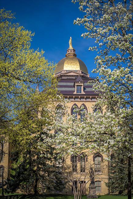 April 17, 2017; Main Building, Spring 2017 (Photo by Matt Cashore/University of Notre Dame)
