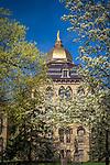 MC 4.17.17 Spring Scenic 05.JPG by Matt Cashore/University of Notre Dame