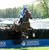 Triplekin and Brian Crowley sail over the last in the $50,000 Queens Cup Steeplechase in Mineral Spring, N.C., on Saturday. Crowley won four of the day's seven races.