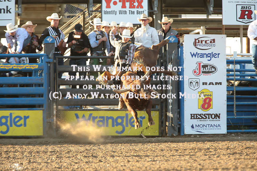 Aaron Pass, Yakity Yack, Cody WY PRCA X-Bulls. Photo by Andy Watson. All Photos (C) Watson Rodeo Photos, INC. Must have written Permission for any use.