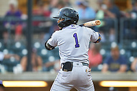 Grand Junction Rockies Todd Isaacs (1) at bat during a Pioneer League game against the Billings Mustangs at Dehler Park on August 14, 2019 in Billings, Montana. Grand Junction defeated Billings 8-5. (Zachary Lucy/Four Seam Images)