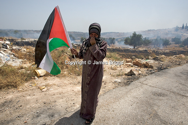 A Palestinian woman covers her face from a mixture of CS gas fired by IDF soldiers & smoke from fires caused by the CS canisters setting the dry undergrowth alight during a demonstration in the village of Bil'in near Ramallah on 04/06/2010.
