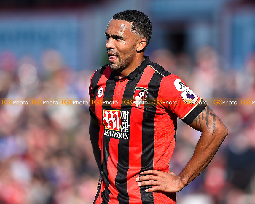 Callum Wilson of AFC Bournemouth during AFC Bournemouth vs Tottenham Hotspur, Premier League Football at the Vitality Stadium on 22nd October 2016