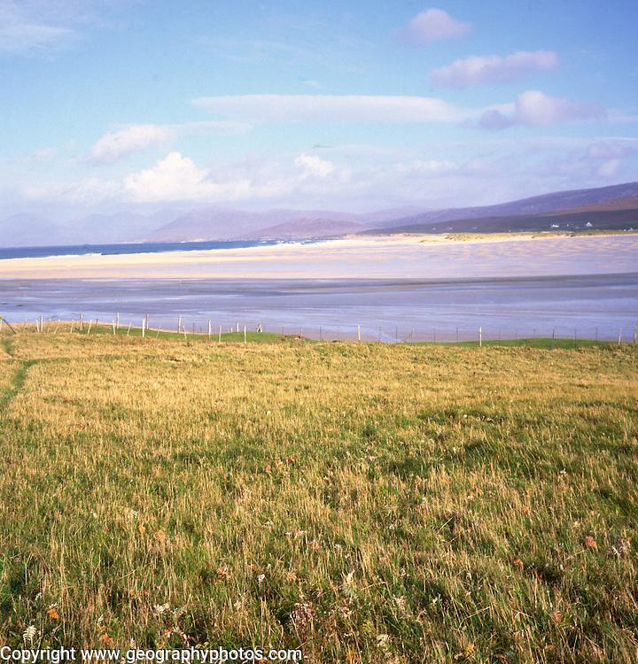 Isle of Harris, Western Isles, Outer Hebrides, Scotland Machair grassland,