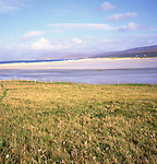 Isle of Harris, Western Isles, Outer Hebrides, Scotland Machair grassland,
