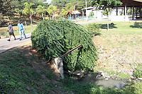 CAMPINAS, SP, 30.07.2019: ESGOTO-SP - Esgoto é lançado em lagoa no Parque Luciano do Valle em Campinas. (Foto: Luciano Claudino/Código19)