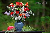 Carl, FLOWERS, photos, SWLA3962,#f# Blumen, Natur, flores, naturaleza