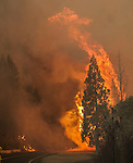 -- Rim Fire -- Fire jumps Highway 120 near Cherry Lake Road and San Jose Family Camp near Yosemite National Park.