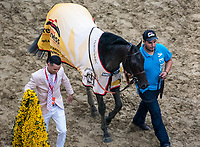 BALTIMORE, MD - MAY 20: Cloud Computing  #2 is walked to his barn after winning the 142nd Preakness Stakes  on Preakness Stakes Day at Pimlico Race Course on May 20, 2017 in Baltimore, Maryland. (Photo by Dan Heary/Eclipse Sportswire/Getty Images)