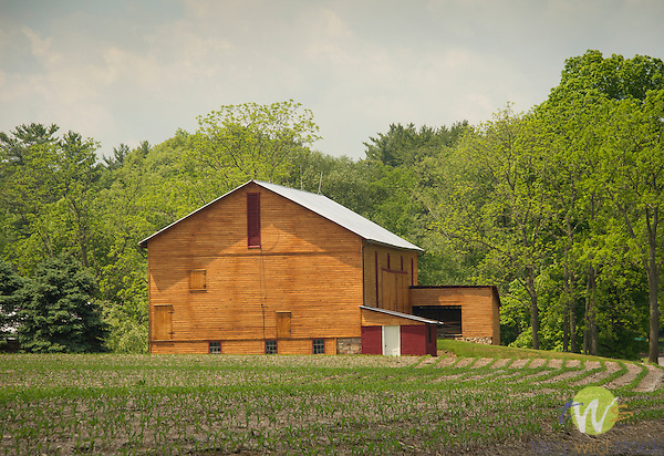 Barn on Pine Woods Road, Oval, PA.