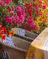 A pair of wicker chairs sits amongst a profusion of pink bougainvillea in the garden