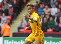 Preston North End's Callum Robinson celebrates scoring his sides first goal <br /> <br /> Photographer Mick Walker/CameraSport<br /> <br /> The EFL Sky Bet Championship - Sheffield United v Preston North End - Saturday 22 September 2018 - Bramall Lane - Sheffield<br /> <br /> World Copyright &copy; 2018 CameraSport. All rights reserved. 43 Linden Ave. Countesthorpe. Leicester. England. LE8 5PG - Tel: +44 (0) 116 277 4147 - admin@camerasport.com - www.camerasport.com