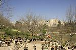 Israel, Jerusalem Botanical Gardens