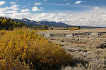 Idaho, East Central, Custer County, Stanley. The Sawtooth Valley and autumn color on the first day of autumn 2019.