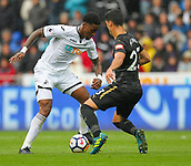 10th September 2017, Liberty Stadium, Swansea, Wales; EPL Premier League football, Swansea versus Newcastle United; Leroy Fer of Swansea City and Mikel Merino of Newcastle United battle for possession during the match