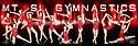 2013 - 2014 Mt. Si Gymnastics