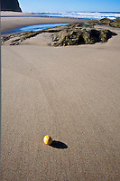 A lemon on the sand at Pomponio State Beach.  At this sand bar you can order your beach with a little lemon.