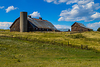 The Eastern Plains between Denver and Colorado Springs are dotted with numerous old barns and farm houses. Here, classic old barns in the Black Forest area just north of Colorado Springs stand the test of time.
