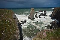Europe/France/Bretagne/56/Morbihan/ Belle-Ile-en-Mer/Port Coton:  Côte sauvage - Les Aiguilles de Port Coton